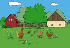 vida-rural